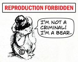 Paddington Bear -- I'm not a criminal! I'm a bear.