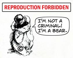 Paddington Bear -- I'm not a criminal! I'm a bear.
