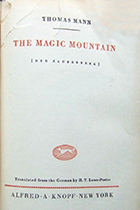 'The Magic Mountain' by Thomas Mann book cover